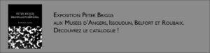 Bandeau de présentation du catalogue de l'exposition de Peter Briggs
